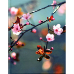Notesbog med Kirsebærblomst