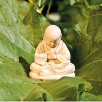 Lille munk i meditation