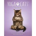 Yoga Cats kort