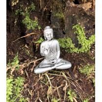 Buddha i tin