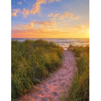Notesbog Sunset beach