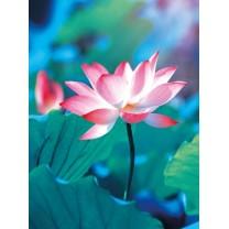 Notesbog Lotus blomst