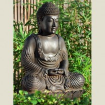 Buddha meditation havestatue